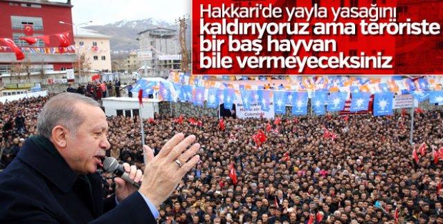 Cumhurbaşkanı Erdoğan'ını Hakkarililer Coşkuyla Karşıladı